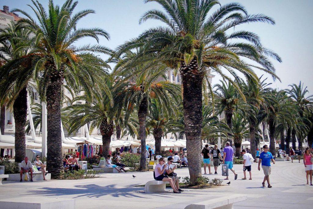 speed dating zapadnoj plaži palme