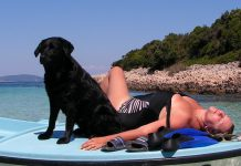 dogs beaches