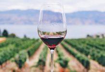 Veľtrh víno a delikatesy